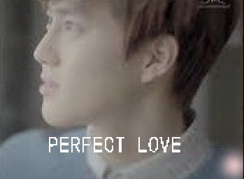 PERFECT LOVE.png