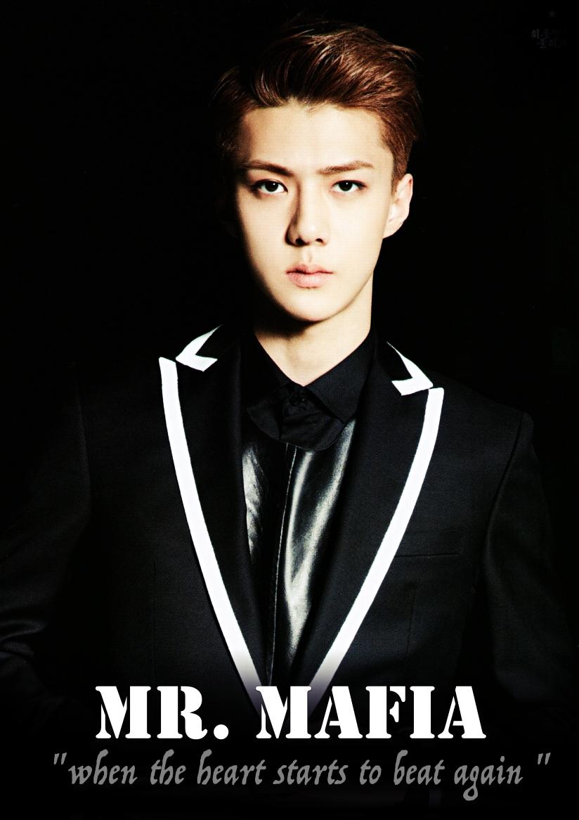 Mr Mafia Cover1.jpg