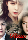 Perfect Flaw Cover.png