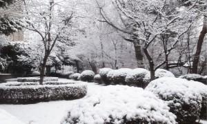 kyung-hee-university-seoul-korea-winter-narnia-300x180
