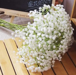 ba9b05668f11c764dc730c3cae9b1bbc--gypsophila-flower-flowers-for-weddings